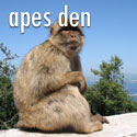 Ape's Den - Gibraltar Tours, Gibraltar, Rock of Gibraltar, Weekend Breaks, Pillars of Hercules, History of the Rock of Gibraltar, Holidays in Gibraltar, Gibraltar Holiday Package, Bed and Breakfast in Gibraltar, Gibraltar Tourist Information, Gibraltar Tourism, Gibraltar Weekend Break